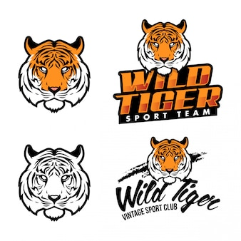 Tiger sport logo set 2