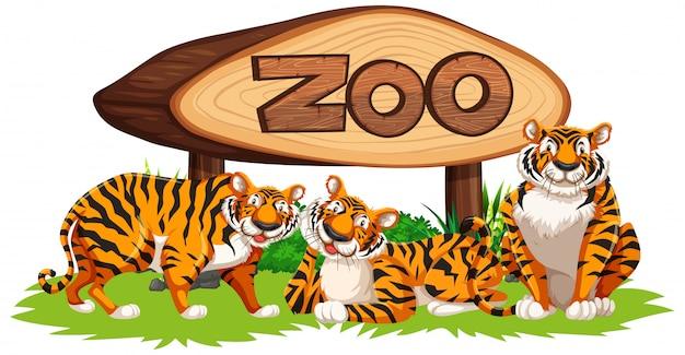 Tiger with zoo baner