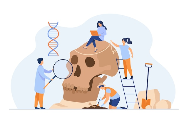 Tiny anthropologists studying neanderthal skull flat illustration.
