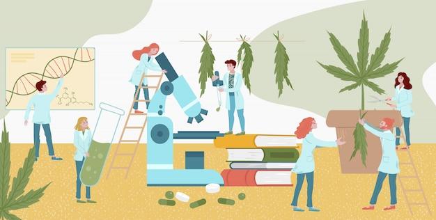 小さなキャラクターラボ薬植物研究大麻、男性女性分析仲間のイラスト。実験室のアシスタントは、顕微鏡を見てください。