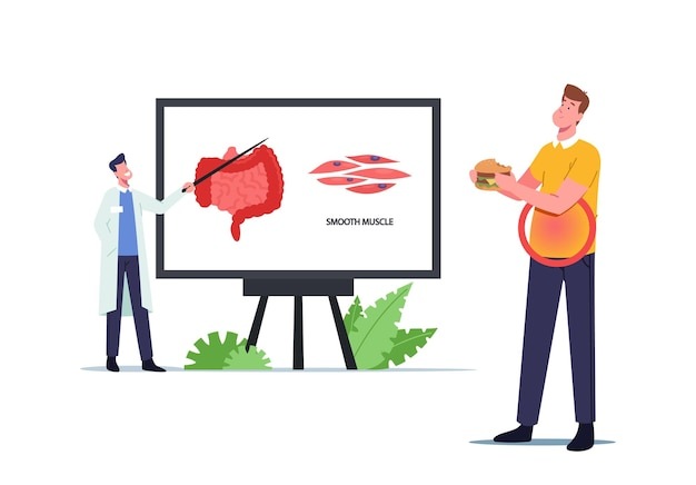 Tiny doctor character presenting intestines smooth musculature on huge screen with infographics, man eating fast food having problem with belly or stomach muscles. cartoon people vector illustration