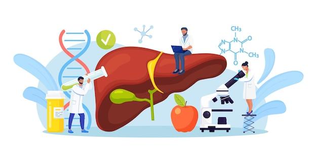작은 의사가 간 질환을 치료합니다. a, b, c, d, 간경변의 의학적 진단. 환자 내부 장기를 검사하는 의사 그룹, 실험실 테스트 수행, 생검, 분자 분석