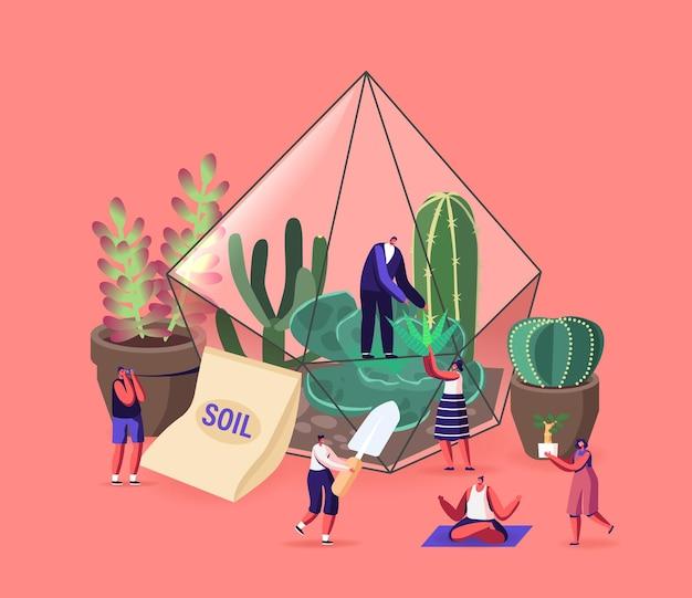 작은 남성과 여성 캐릭터는 집에서 화분에 선인장과 다육 식물을 키우고, 정원을 가꾸고, 취미로 식물을 재배하고, 테라리움 개념에서 작곡을 합니다. 만화 사람들 벡터 일러스트 레이 션