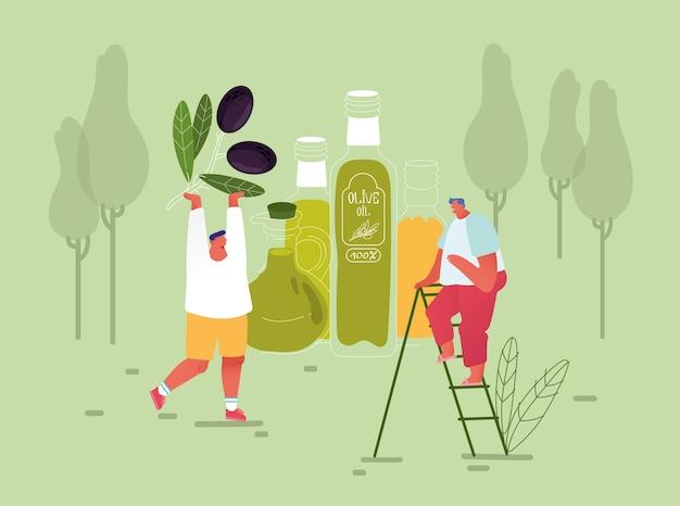 小さな男性キャラクターは、巨大なエクストラバージンオリーブオイルガラス瓶のはしごの上に立って、自然の背景に緑の新鮮なオリーブの枝を運びます。