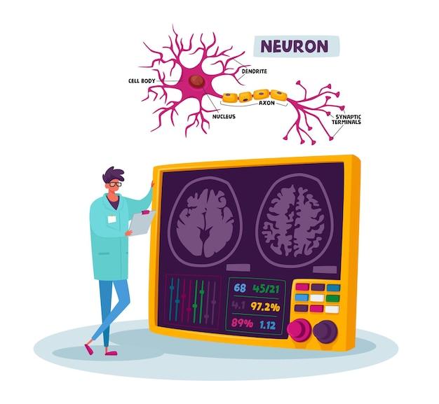 의료용 가운을 입은 작은 과학자 남성 캐릭터가 실험실에서 시냅스 단자가있는 수상 돌기, 세포체, 축삭 및 핵의 뉴런 계획으로 인간의 뇌를 찾습니다
