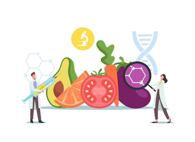 Tiny scientists male and female characters at huge genetically modified food and agriculture crop learning gmo food in laboratory, chemistry or biology science. cartoon people vector illustration