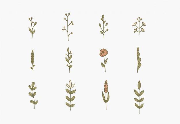 작은 간단한 식물 삽화, 선 삽화, 최소한의 디자인 요소. 우아하고 섬세한 식물 낙서