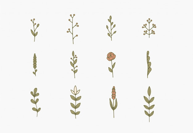 Tiny simple botanical illustrations, line artwork, minimal design elements. elegant and delicate plant doodles
