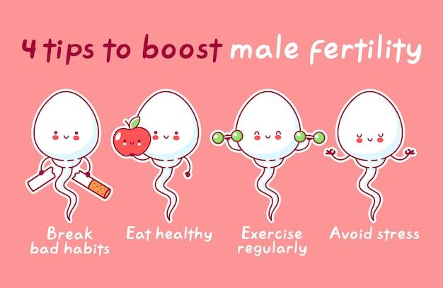男性の生殖能力を高めるためのヒント。かわいい幸せな面白い精子細胞。ライン漫画かわいいキャラクターイラストアイコン。受精コンセプト