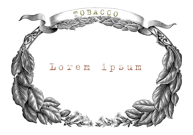 Tobacco frame hand draw vintage engraving style black and white clip art isolated on white background