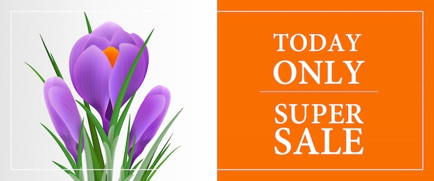 Today only super sale, thirty percent off banner template with violet snowdrop