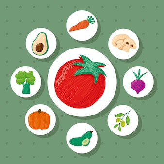 Tomato and bundle of eight vegetables healthy food icons  illustration