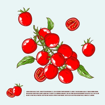 Tomato cherry illustration premium