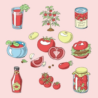 Tomato juicy tomatoes food sauce ketchup soup and paste with fresh red vegetables illustration organic ingridients for vegetarians diet set isolated on background