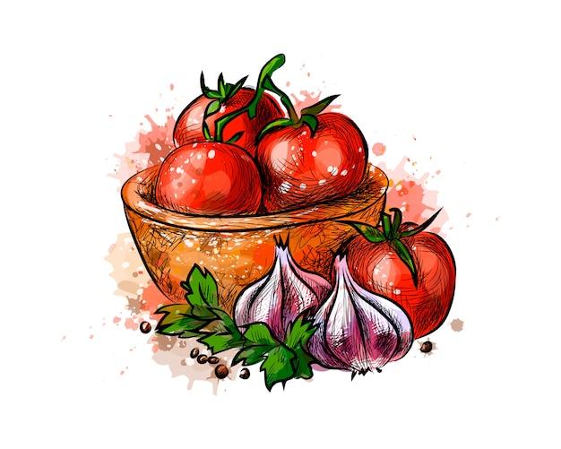水彩のスプラッシュからトマトとニンニク