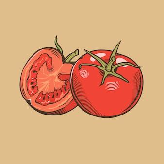 빈티지 스타일의 토마토입니다. 컬러 벡터 일러스트 레이 션