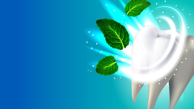 歯と自然な香りのミントの葉のコピースペースベクトル