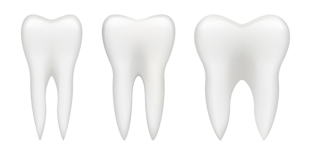 Tooth   illustration isolated on white background