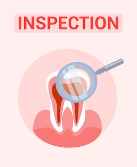 Tooth inspection, examination  banner concept