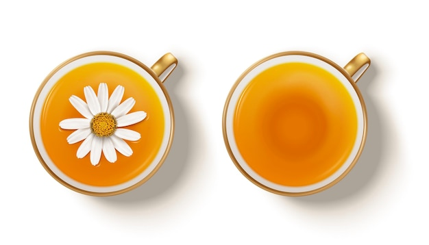 Top view of camomile hot tea in 3d illustration