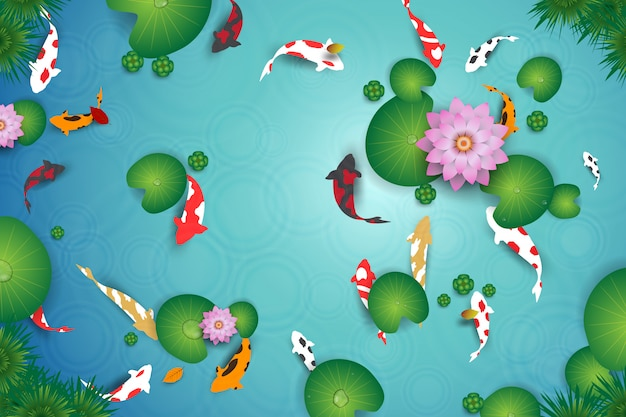 Top view of clean water lake with koi fishes.