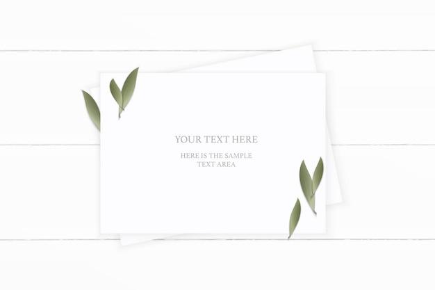 平面図エレガントな白い組成紙木製の背景に自然の葉。