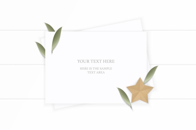 Top view elegant white composition paper plant leaf and star shape craft on wooden background.
