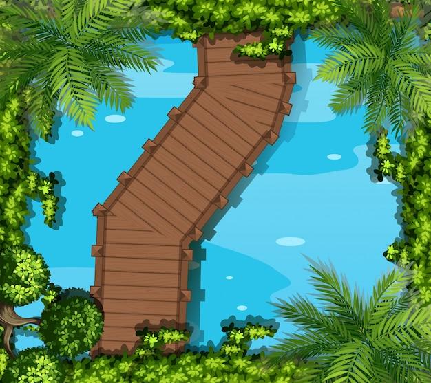 다리와 연못의 상위 뷰