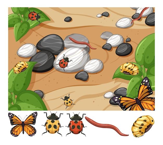 Сцена вида сверху многих насекомых с изолированными различными насекомыми