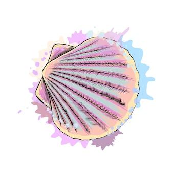 リアルな水彩画のスプラッシュからの上面図貝殻ホタテ