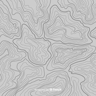 Top view topographic grey lines background