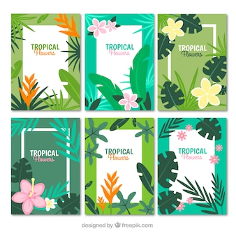 Topical nature card collection