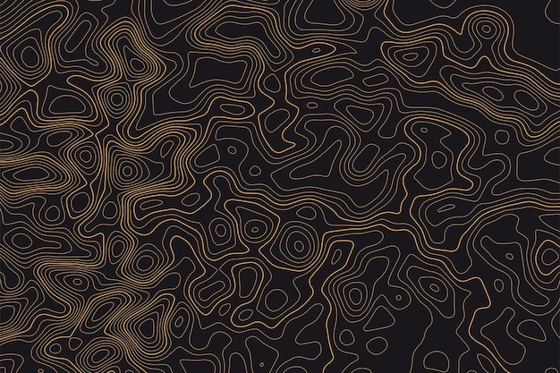Topographic line map pattern contour elevation topographic and textured background of geographic