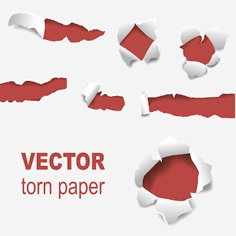 Torn edges paper hole lacerated ragged edge and crack realistic 3d style vector illustration