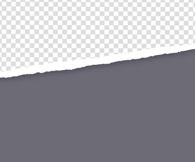투명에 찢어진 회색 종이 가장자리