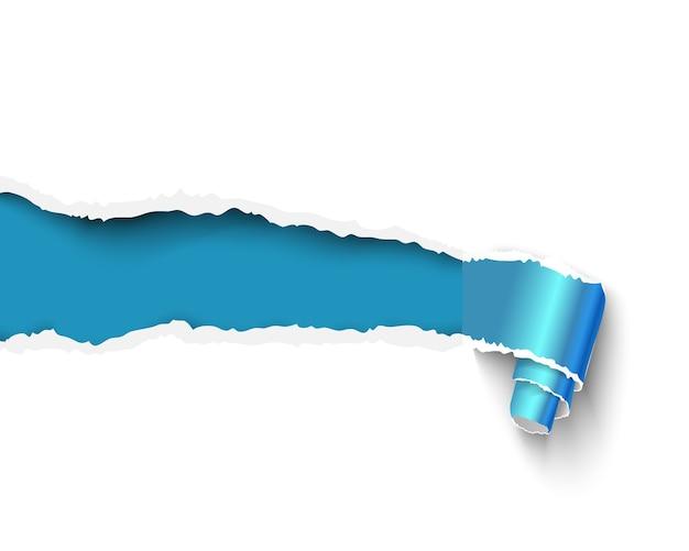破れた紙ロール。テキスト用のスペースのあるバナー。青い紙の巻物と白紙のテンプレート