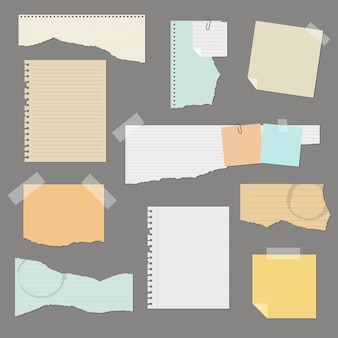 Torn paper set  illustration isolated