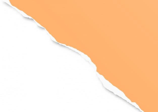Рваный лист бумаги