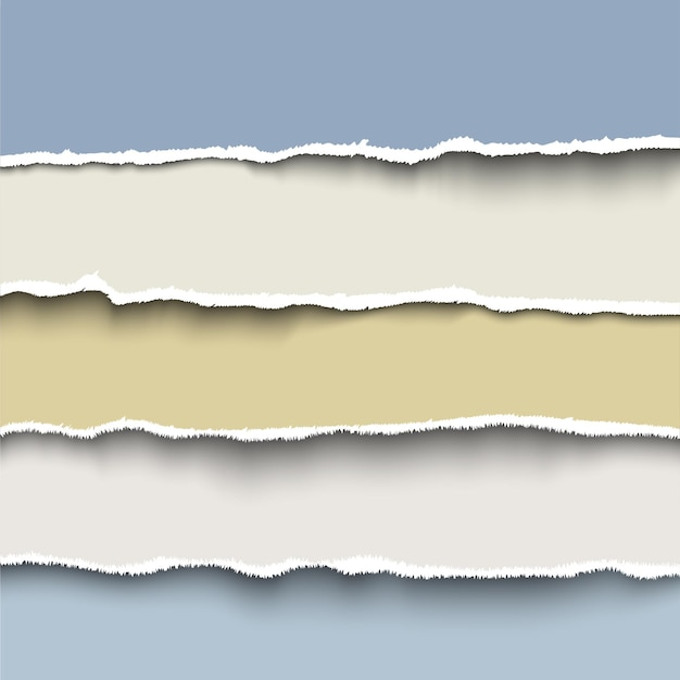 Torn paper strips set, realistic template for banner