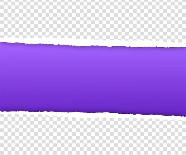 투명에 찢어진 보라색 종이 가장자리