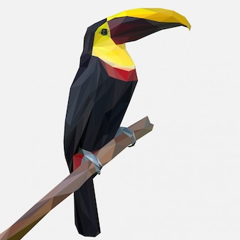 Toucan bird pose on a branch with lowpoly style
