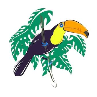 Птица тукан сидит на ветке с зелеными тропическими листьями