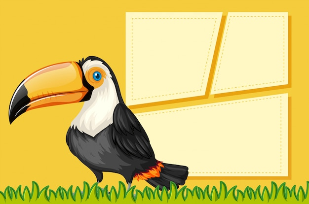 A toucan on blank template