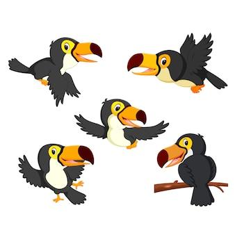 Toucan cartoon collection set