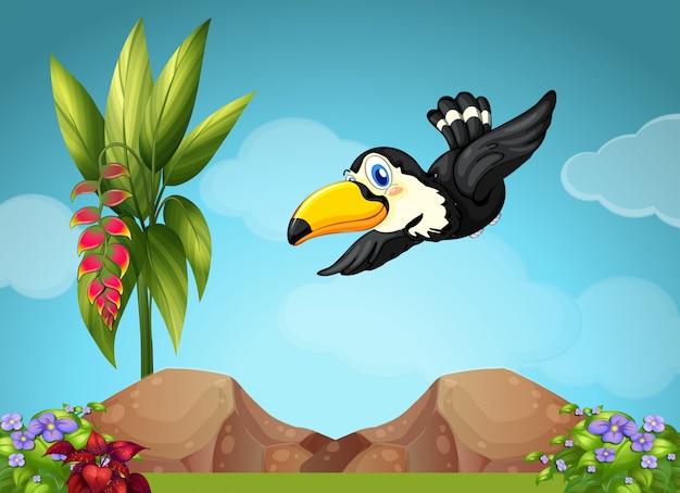 Toucan flying in the garden