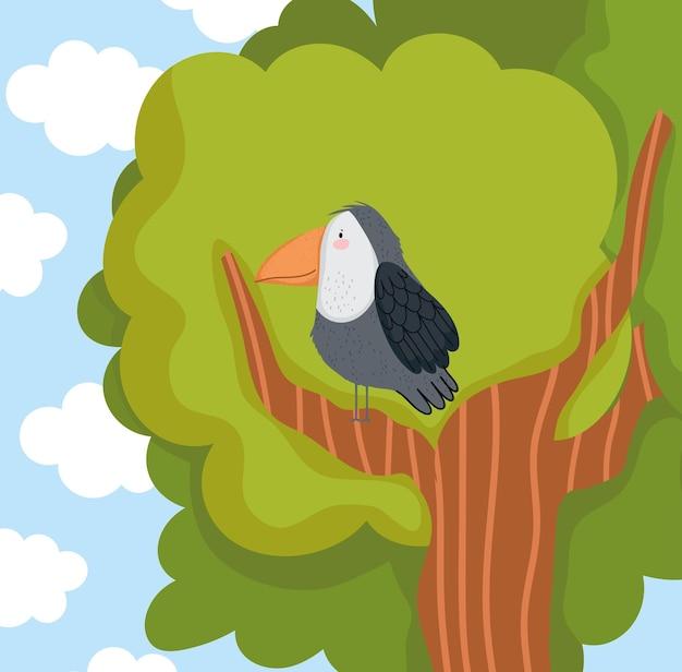 枝の木のオオハシ