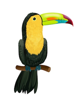 Toucan sitting on tree branch. for banners, posters, leaflets and brochures.