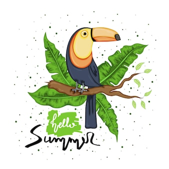 Toucan sitting on a tree branch. summer collection. cartoon style. vector illustration.