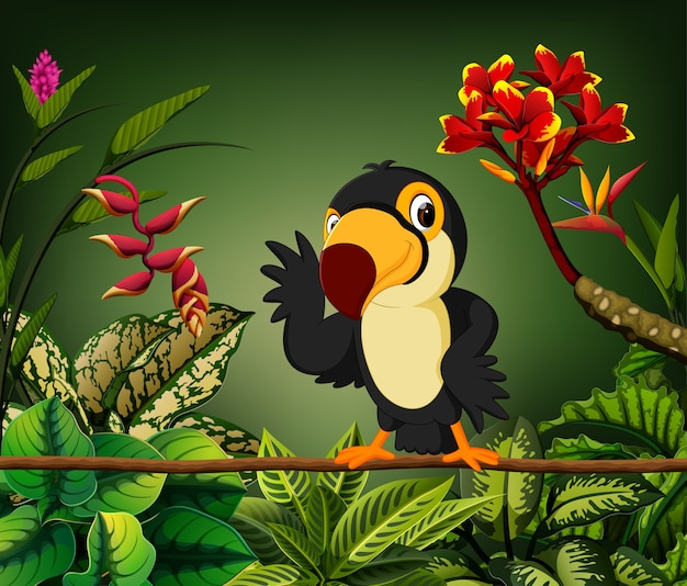 Toucan on the stalk with the happy face