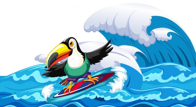 Toucan surfing big wave